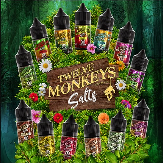 12-Monkeys-nic-salts-uk