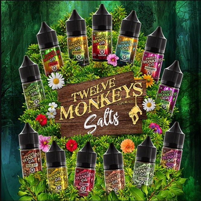 12-Monkeys-nic-salts-uk