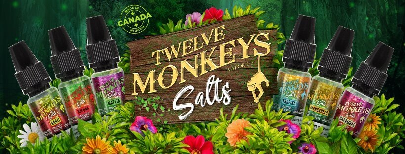 Twelve Monkeys Nic Salt Banner UK